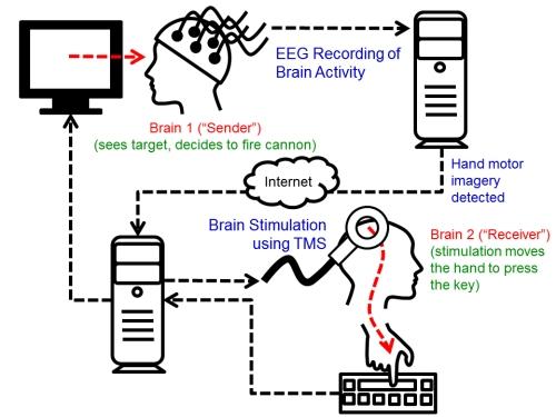 uw_brain2brain_interface_experiment1